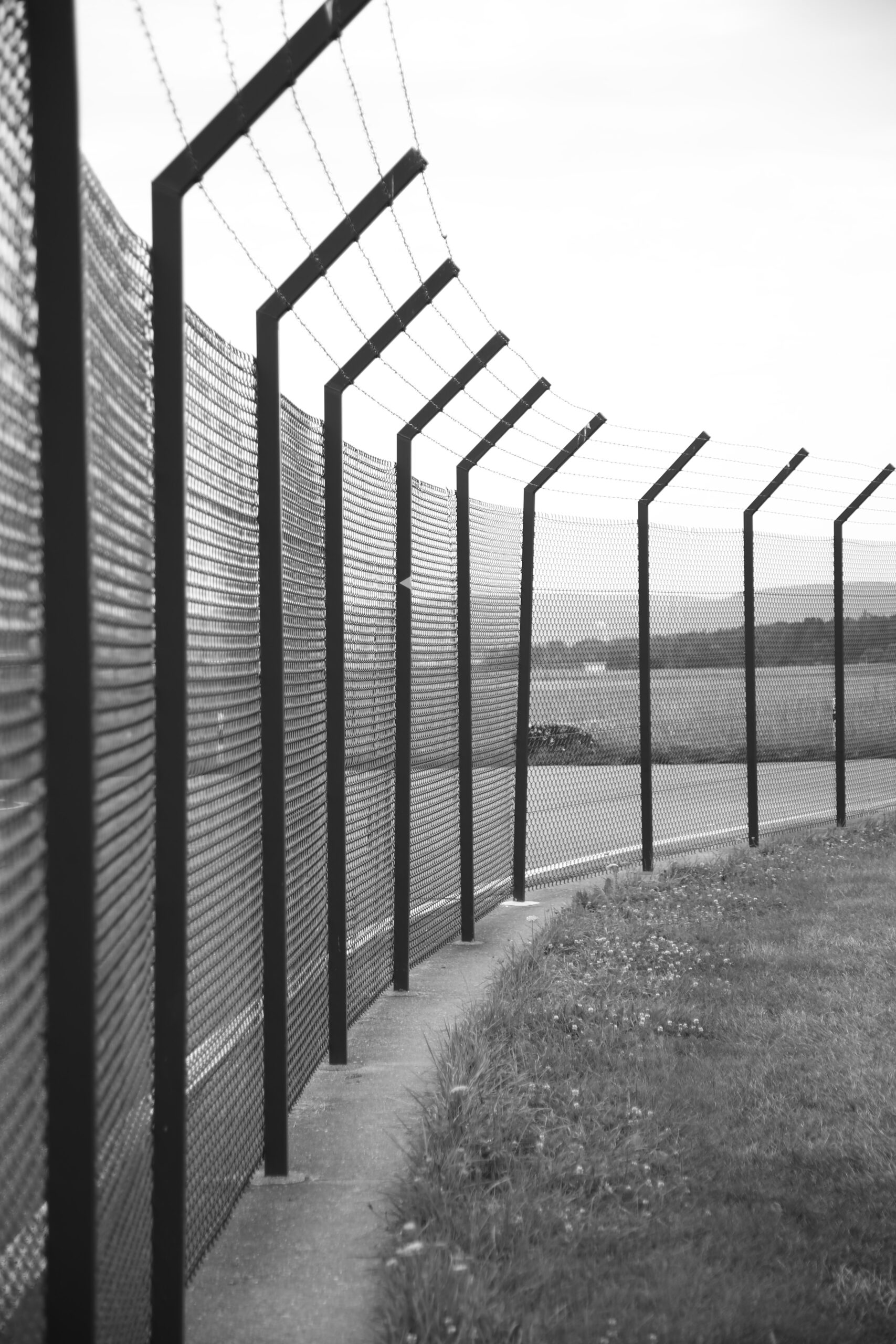 What Basic Fence Systems Are Best for You?